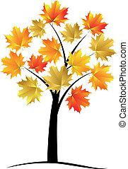 Érable, arbre, automne, feuille