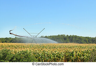 Irrigation Equipment - Irrigation equipment watering a field...