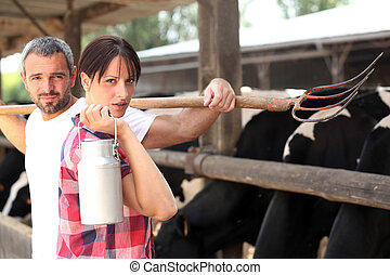 Farmer and wife collecting milk from cows