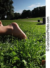 公園, 放松