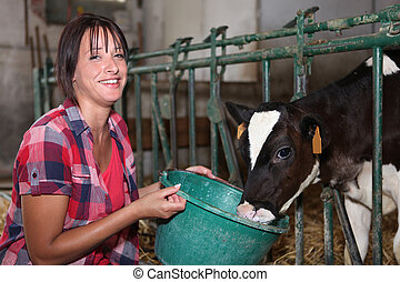 Woman feeding calf