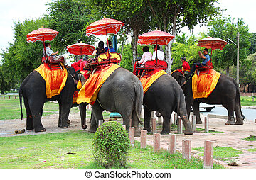 an elephant ride tour, Thailand