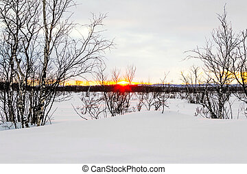 sunset in Finland  over snowscape with trees