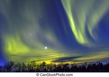 norteño, luces, (Aurora, borealis), encima, Snowscape