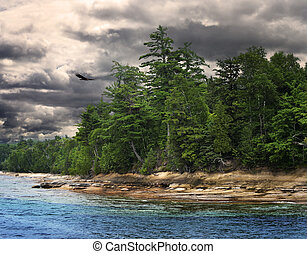 Lake Shore With Trees And Dramatic Sky