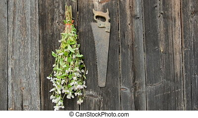 hanging garden herbs bunch on wall - hanging garden herbs...