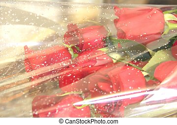 A bouquet of red roses in a gift wrap
