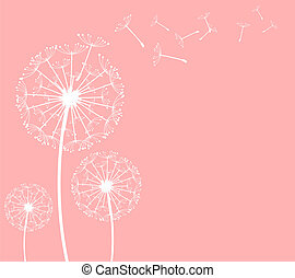 dandelion - The vector dandelion on a wind loses the...