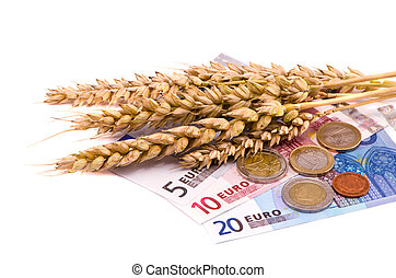 isolated wheats harvest ears and euro - isolated on white...