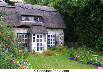 Thatched cottage - Beautiful secluded English thatched...