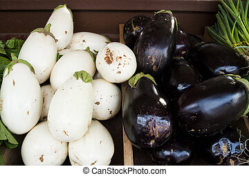Eggplant at the local farmers market
