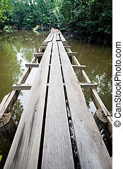 Long wooden boardwalk in a mangrove swamp in the tropics