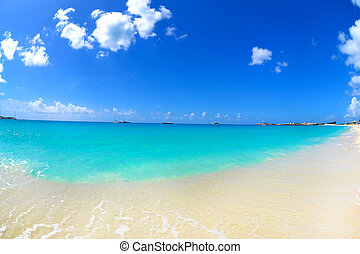 Beautiful Caribbean Beach and Water