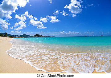 Vibrant Caribbean Beach