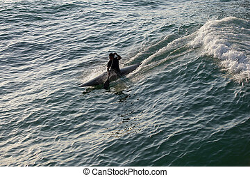 Silhouette of man surfing