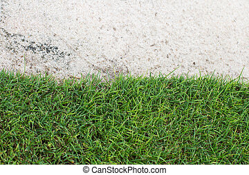 green grass and sand on the golf course - White sand, green...
