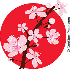 vector cherry branch over japanese flag