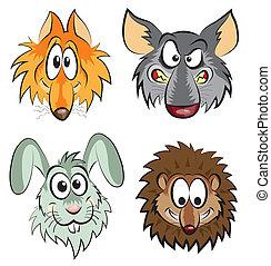 zorro, lobo, liebre, erizo