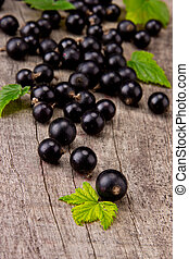 black currant - Fresh black currant