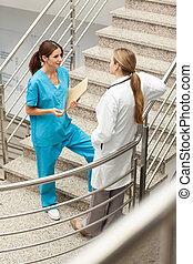 話し, 看護婦,  stairwell, 一緒に, 医者