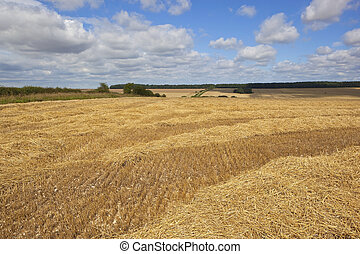 straw and stubble