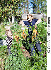 Mature woman in garden with small daughter picking the carrot