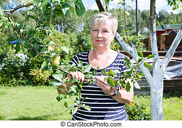 Senior adult woman standing near apple-tree with green apples brunch