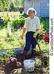 Mature woman in own garden with bunch of fresh potato