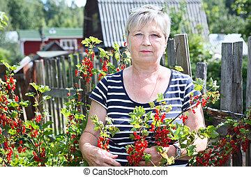 Senior woman in garden showing brunch of red currants berries