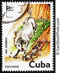 Postage stamp Cuba 1981 Horse, Equus Ferus Caballus - CUBA -...