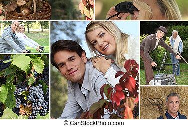 Mosaic of couples enjoying nature
