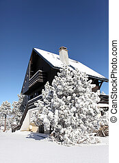 Winter chalet covered in snow