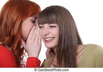 Two friends gossiping.