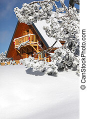 Wooden house in the snowy hills