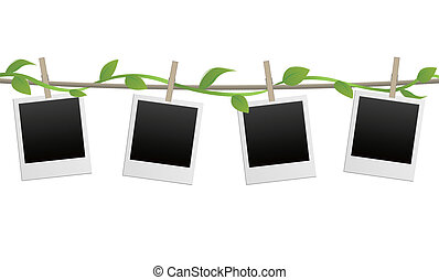 blank photo frames with plant