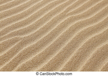 beach sand background - close up view beach sand background...
