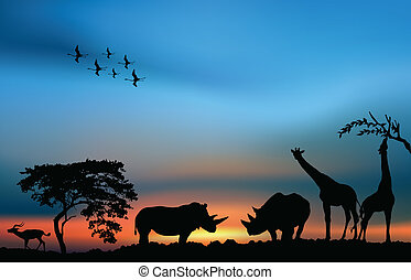 African savanna with acacia and animals at the sunset