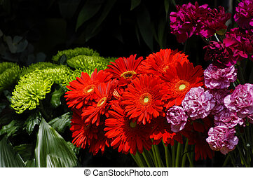 Flowers on a florist stall, red gerbera daisies