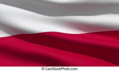 Polish flag, 3d animation. perfect seamless loop