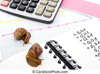 Slow Business - This business is going really snail slow!