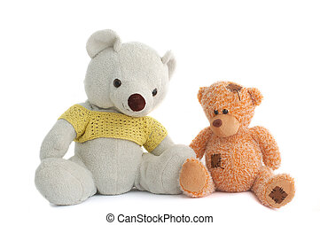 Toys Two teddy bear isolated on white background