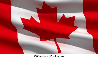 Canadian flag, 3d animation perfect seamless loop