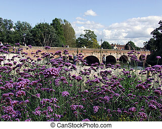 Stratford Upon Avon - Bridge at Stratford Upon Avon