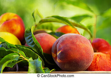 Peach on basket of various fruits