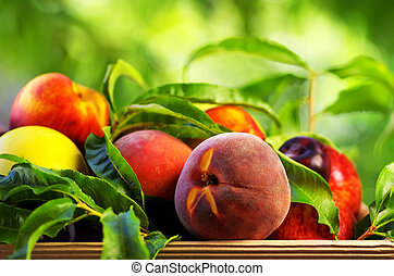 Peach and various fruits