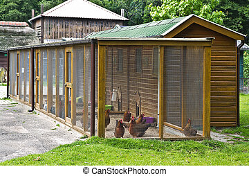 Fowl run to protect chicken for the night - Big Fowl- or...