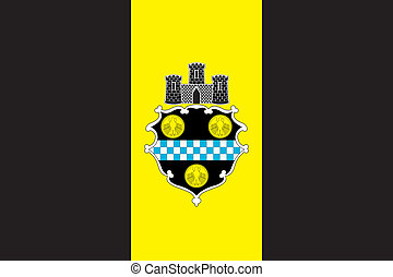Pittsburgh city flag - Various vector flags, state symbols,...