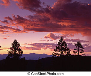 New Mexico Sunset - A typical pastel, southwestern sunset...