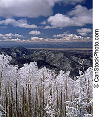 Winter Wonderland, Santa Fe NF - The pristine morning did...