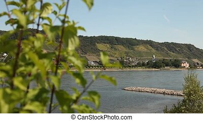 River Rhine in germany - Winegrowing near a river Rhine, ge